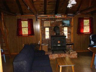 Cabin 3 Earth Stove